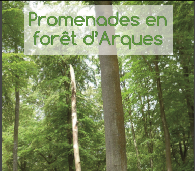 foret-Arques.PNG